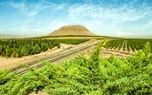شرکت فولاد مبارکه سازمانی مسئولیت پذیر در زمینه مسائل زیست محیطی