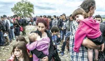 ٦٠میلیون پناهجو در جهان وجود دارد