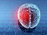 محرومیت دوران کودکی موجب کوچک شدن اندازه مغز میشود