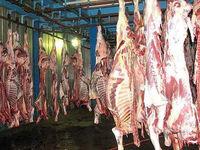 جهاد کشاورزی: مردم نگران مرغ و گوشت برای شب عید نباشند