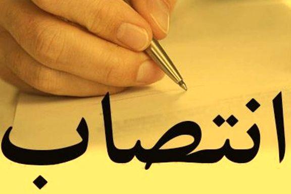 «تورج فرهادی» شهردار منطقه۶ پایتخت شد