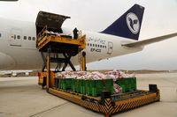 آغاز مجدد واردات گوشت از فرودگاه پیام