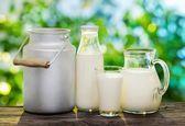 1563 تومان، قیمت تمام شده شیر برای دامداران