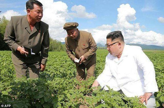 سریعترین سقوط اقتصادی کره شمالی در ۲۱سال اخیر