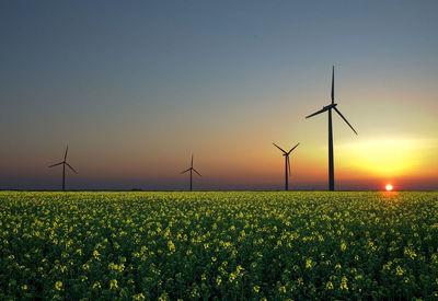 انرژی تجدید پذیر درمحاق