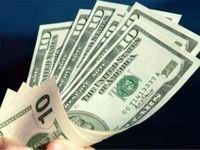 رصد ارز تجاری در گمرک ممکن شد