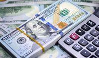 لزوم جدیت بیشتر برای بازگشت ارزهای صادراتی/ دولت هزینههای ارزی خود را کاهش دهد