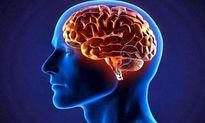 راهکارهایی برای افزایش جریان خون در مغز