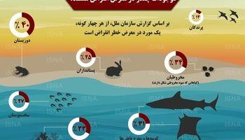 کدام موجودات در معرض انقراض هستند؟ +اینفوگرافیک