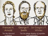 برندگان نوبل شیمی معرفی شدند