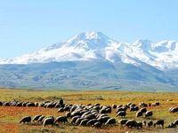 کوه سبلان جهانی میشود