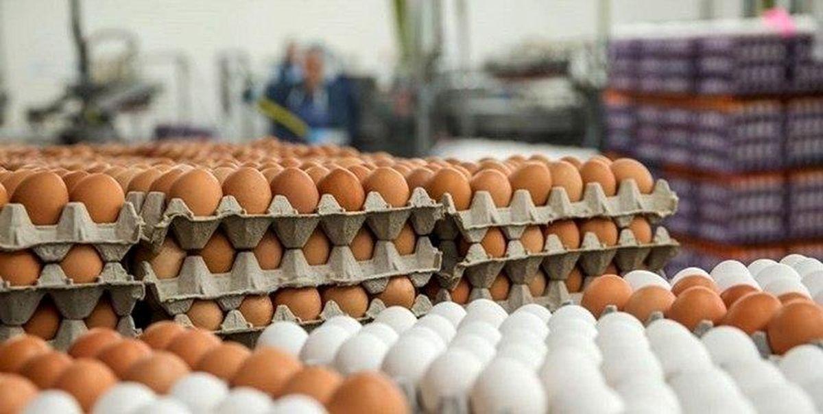 قاچاق تخم مرغ به افغانستان و عراق عامل گرانی است؟