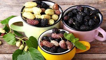 این میوهها به درمان سرطان کمک میکند