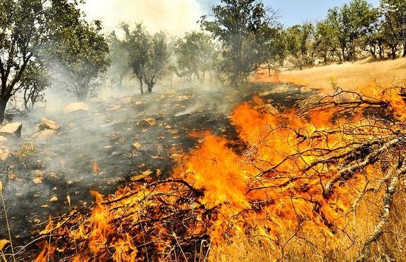 آتشسوزی شدید در جنگلهای مارگون