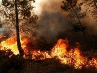 آتش سوزی ۶۴هکتار از مزارع و مراتع استان ایلام