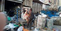 انتقاد شهرداری از شکلگیری گودهای جدید زبالهگردی در اطراف تهران