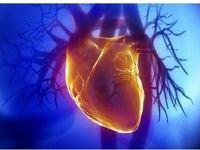 بیماری قلبی مردان بیشتر است!