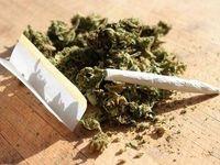افزایش مصرف «گُل» بین نوجوانان
