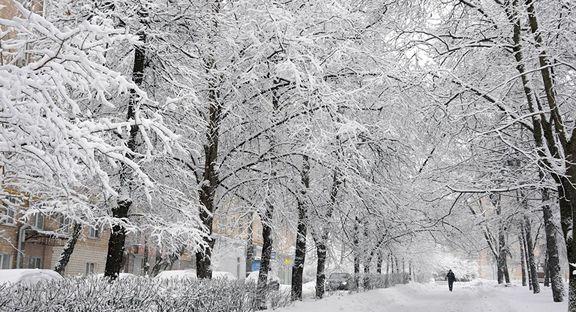 چگونه از بارش زودهنگام برف بیشتر لذت ببریم؟