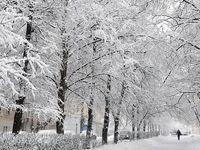 بارش برف، باران و تگرگ در برخی استانها