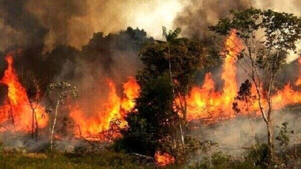 آتش سوزی مراتع و جنگل های کوه سیاه کهگیلویه مهار شد