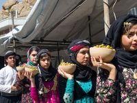 جشنواره میوههای بهشتی در دالاهو +تصاویر