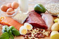 ثبت نام واحدهای پروتئینی برای بازگشت به کار در سامانه سلامت