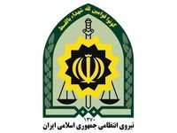 ضربه نماینده مجلس، بینی پلیس را شکست
