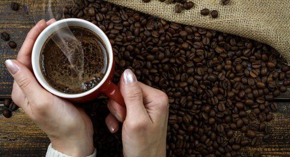 ارتباط قهوه و شکلات با هوش انسان