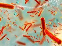 استرس باکتریهای روده را دشمن بدن میکند