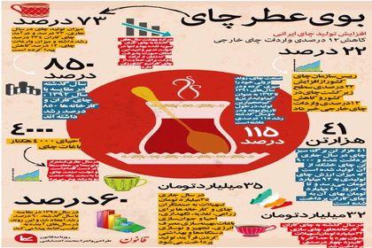 تولید چای ایرانی افزایش یافت +اینفوگرافیک