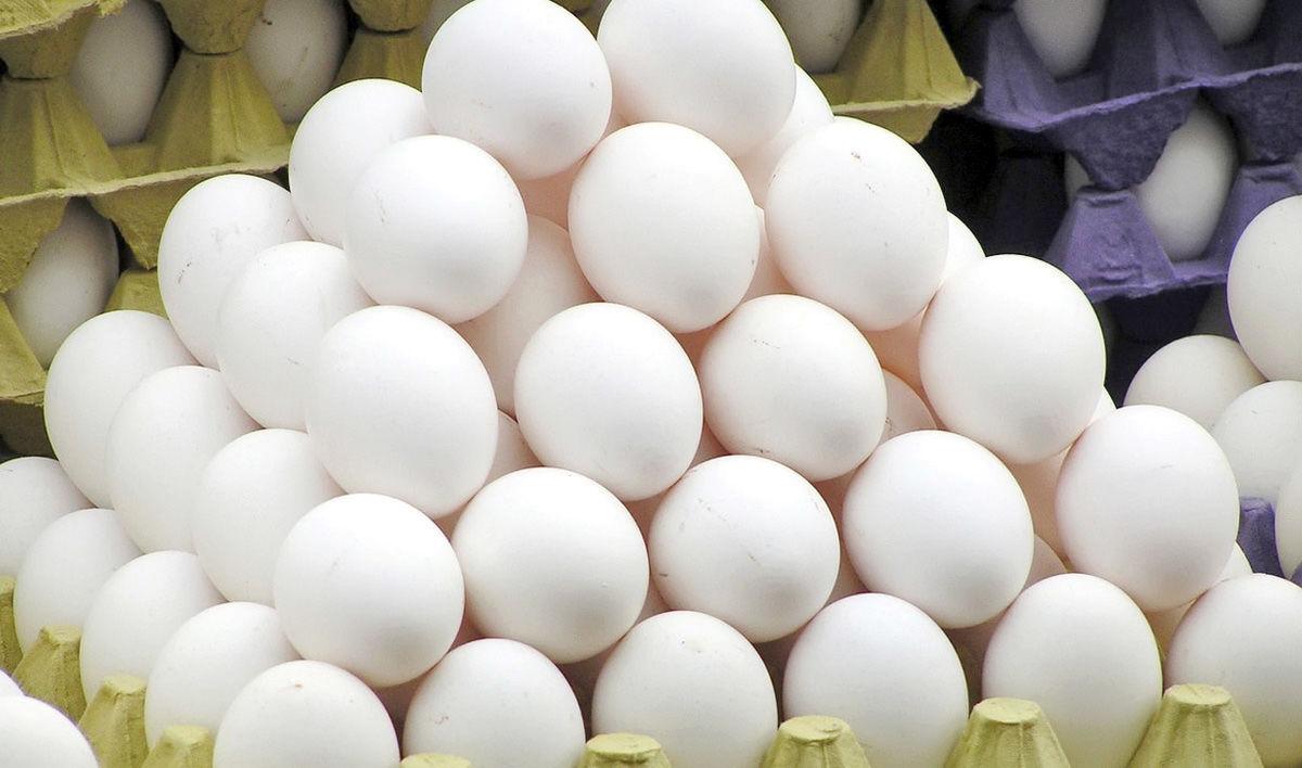 تخم مرغ یک ساله ۷۲درصد گران شد