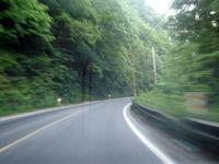 ریزش کوه جاده چالوس را بست