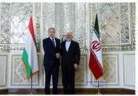 دیدار وزیر خارجه تاجیکستان با ظریف +عکس