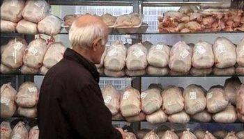 مرغداران خواستار افزایش قیمت مرغ شدند