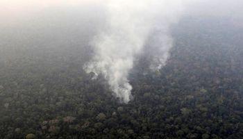 آتشسوزی ادامه دار در جنگلهای  آمازون +فیلم