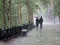 افزایش ۲۳ درصدی بارشها در سال گذشته