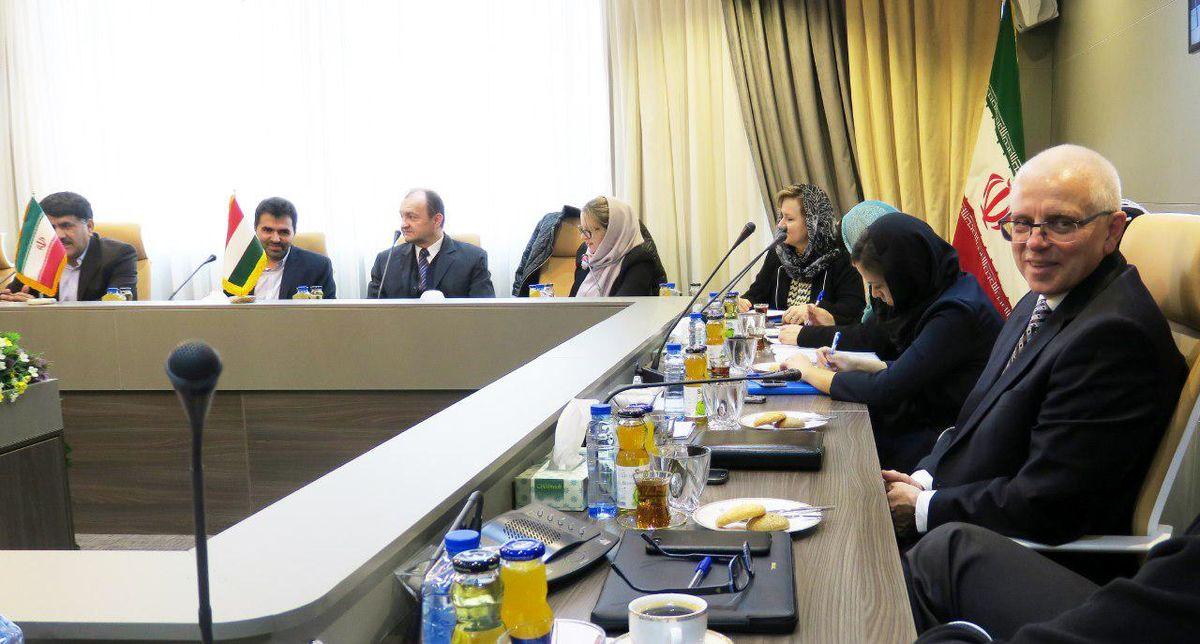 همکاری بانک شهر و اگزیم بانک مجارستان برای تامین مالی تولید اتوبوسهای درون شهری در ایران