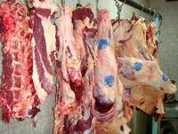 قیمت گوشت گوسفند افزایش یافت