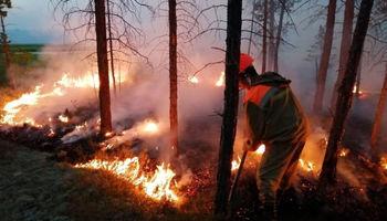 مبارزه روسیه با آتشسوزی در سیبری +فیلم