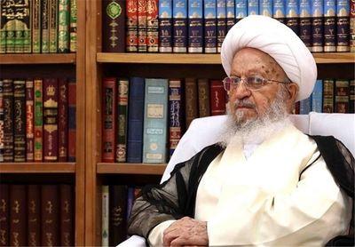 آیت الله مکارم: دکتر هاشمی در وزارت بهداشت دولت دوازدهم ابقاء شود
