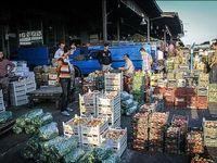 افزایش قیمت میوههای وارداتی متاثر از نوسانات دلار