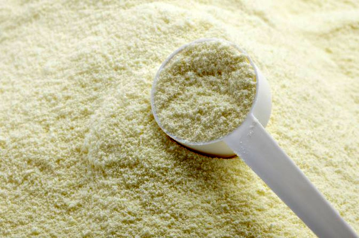 صادر نشدن شیرخشک به ضرر دامداران است