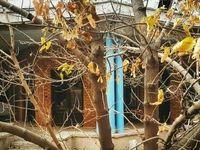 خروج خانه نیما یوشیج از ثبت ملی
