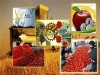 پرداخت بیش از ۷۵درصد تسهیلات اشتغال روستایی