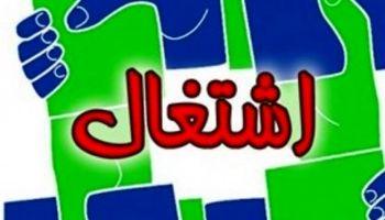 استان تهران بیش از تعهدات خود شغل ایجاد کرد