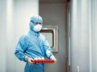 ماندگاری ویروس کرونا بر روی سطوح چقدر است؟