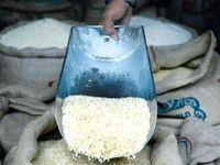 ۹۶۹هزار تن برنج وارد شد