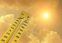 گرما چگونه سبب مرگ و میر می شود ؟