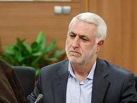 مدیرعامل سازمان زیباسازی شهرداری تهران منصوب شد